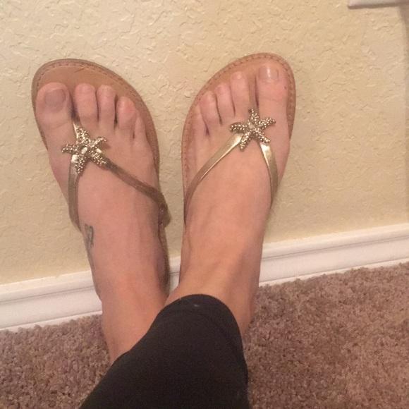 3a93fd3d957262 ANTONIO MELANI Shoes - Antonio Melani Starfish sandals